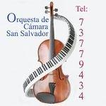 Orquesta de Camara